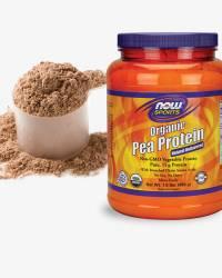 Protein Powder Supplements