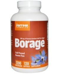 Borage Oil Alpha Lipoic Acid