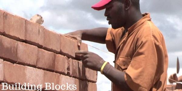 Fatty acids as Building blocks